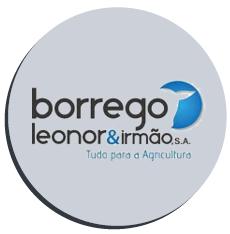 borrego-leonor